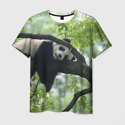 Мужская футболка 3D Панда спит на ветке